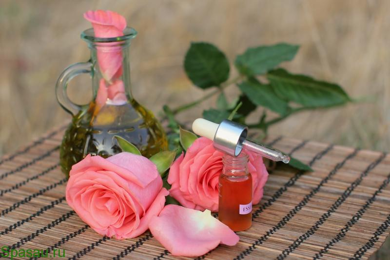 Полезные свойства розы Народная медицина: лечение травами и другими природными богатствами