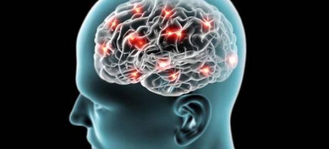 Симптомы и признаки болезни Паркинсона. Лечение народными методами