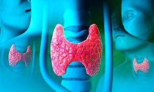 Щитовидная железа лечение йодом