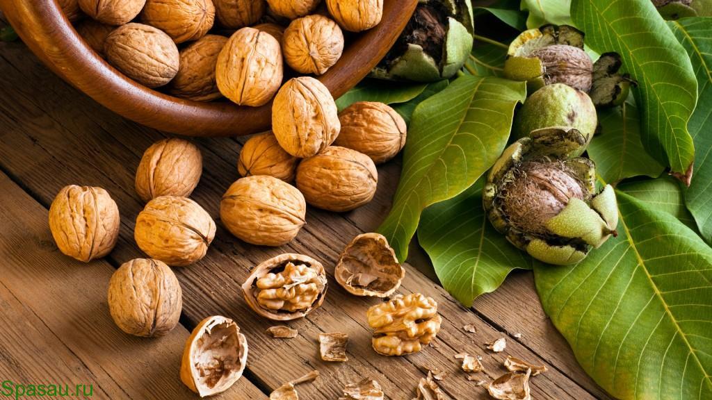 Лечение грецким орехом